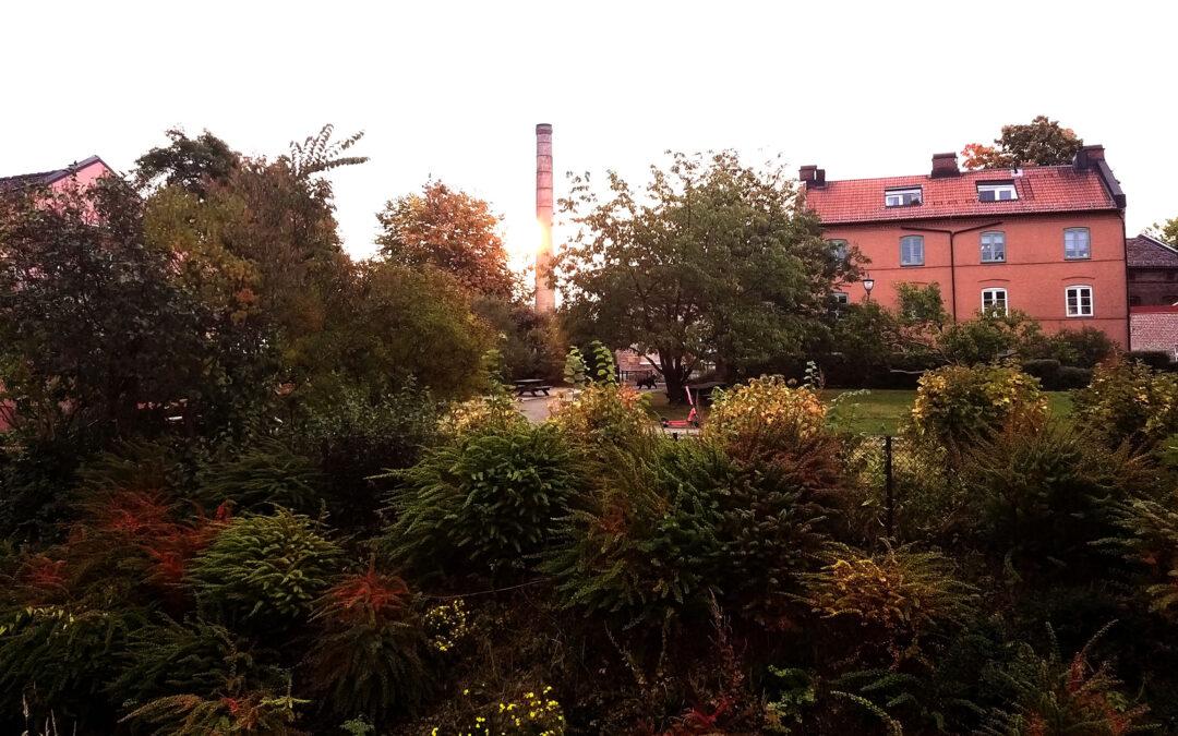 Høsten kommer – Stille dager